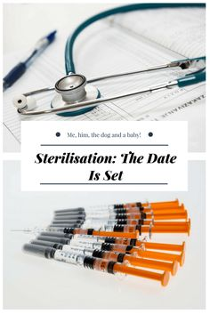 Sterilisation: The Date Is Set - Me, him, the dog and a baby!