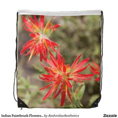 Shop Indian Paintbrush Flowers Backpack created by AeshnidaeAesthetics. Black Rope, Back To Black, Indian Paintbrush Flowers, 3 Ring Binders, Everywhere You Go, Custom Binders, Staying Organized, Black Trim, School Supplies