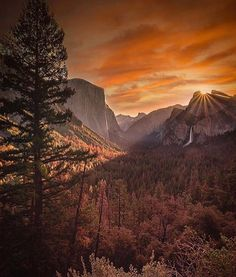 Yosemite National Park | Photograph By @jrhigz_ by nat.geography