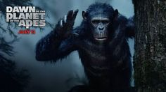 Watch Dawn of the Planet of the Apes (2014) Movie Online: Blu-Ray: