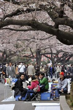 saving money on travel to Japan