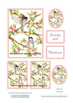 Carte numérique Sparrow Make Your Own Card, Scrapbooking, Art Projects, Decorative Boxes, My Etsy Shop, Just For You, Clip Art, Birds, The Originals