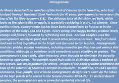 Pomegranate in biblical times