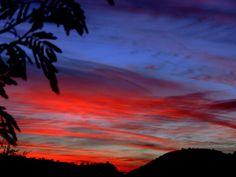 Phoenix, AZ - Taken by: Misty PhotoPage