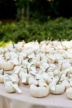 For an autumn wedding miniature ghost pumpkins make excellent escort cards. Fall wedding mini white pumpkin for seating cards