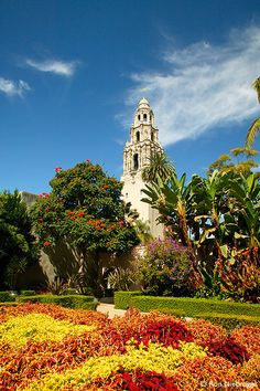~California Tower And The Museum Of Man With The Casa Del Rey Moro Garden.