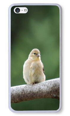 Cunghe Art Custom Designed White PC Hard Phone Cover Case For iPhone 5C With Bird Branch Couple Phone Case https://www.amazon.com/Cunghe-Art-Custom-Designed-iPhone/dp/B015XIEHGG/ref=sr_1_6548?s=wireless&srs=13614167011&ie=UTF8&qid=1468569567&sr=1-6548&keywords=iphone+5c https://www.amazon.com/s/ref=sr_pg_273?srs=13614167011&rh=n%3A2335752011%2Cn%3A%212335753011%2Cn%3A2407760011%2Ck%3Aiphone+5c&page=273&keywords=iphone+5c&ie=UTF8&qid=1468569667&lo=none