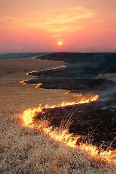 Prairie Fire, Flint Hills, Kansas photo via thehome. Spring is prairie fire season--all the ranchers burn their land to encourage grass to grow. Beautiful World, Beautiful Places, Beautiful Pictures, Prairie Fire, Foto Gif, Flint Hills, Into The Fire, On Fire, All Nature