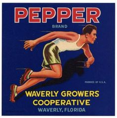 PEPPER Vintage Waverly, Florida Citrus Crate Label, with corners