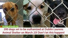 Dublin Laurens (GA) Animal Shelter ordered to euthanize 200 dogs on March 23, 2015! Don't Let This Happen! | YouSignAnimals.org