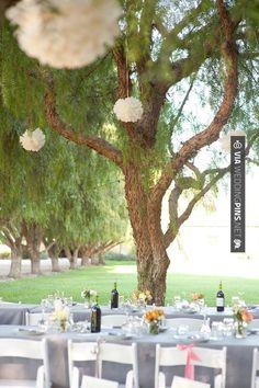 Yes - DIY reception (ByCherry Photography) | CHECK OUT MORE IDEAS AT WEDDINGPINS.NET | #weddings #rustic #rusticwedding #rusticweddings #weddingplanning #coolideas #events #forweddings #vintage #romance #beauty #planners #weddingdecor #vintagewedding #eventplanners #weddingornaments #weddingcake #brides #grooms #weddinginvitations