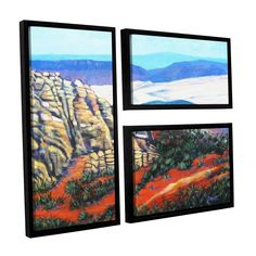 ArtWall 'Gene Foust's Rocky Mountain Living' 3-piece Floater Framed Flag Set
