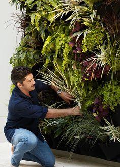 Vertical Gardens - Create a green wall with our Vertical Garden Solutions Vertical Garden Wall, Vertical Gardens, Jamie Durie, Garden Solutions, Room With Plants, Recycled Garden, Home Garden Design, Garden Inspiration, Garden Ideas