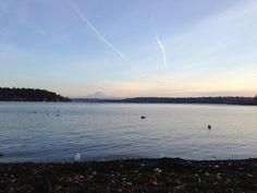Mt. Rainier, Seattle