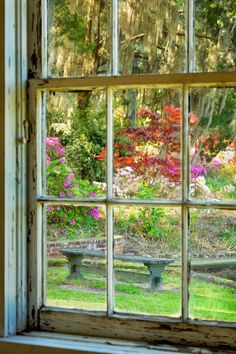 Garden View, Middleton Place, Charleston, SC Doug's Photo Blog: Monetesque?