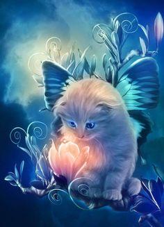 Een baby naturel kat