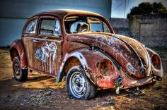 Dead Beetle by Erick Ungarelli on 500px