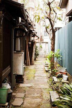 Shimokitazawa green alley : Setagaya, Tokyo, Japan / Japón by Lost in Japan, by… World Street, East Street, Street View, Amazing Photography, Street Photography, Shimokitazawa, Tokyo Streets, Japanese Lifestyle, Japan Street