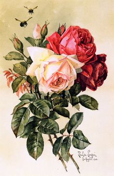 """Raoul de Longpre ~ """"Roses and Bumblebees"""""""