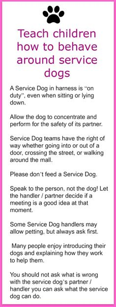 Pet Safety - Teaching Children How to Behave Around Service Dogs. Do you know how to teach your child how to act around a service do they might encounter?