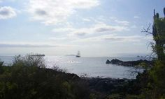 Our ship see from Dragon Hill, Photo of Galapagos Islands - IgoUgo