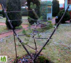 Ниваки из сосны  Последние несколько лет меня все больше и больше увлекает работа по формированию декоративных деревьев на садовом участке. Особый интерес вызывает тема формирования хвойных растений в стиле ниваки или садового бонсая.  Read more: http://www.ufagarden.ru/dekorativni-sad/nivaki-iz-sosny.html