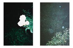 クリーナ(CLEANA) 2016年春夏コレクション Gallery10