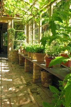 greenhouse - mediterranean rustic style.