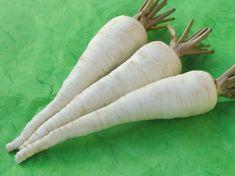 Bohatá úroda kvalitného petržlenu: Takto sa z nej budete tešiť aj vy Carrots, Flora, Gardening, Fruit, Vegetables, Belle, Carrot, The Fruit, Plants