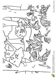 Coloriage du jeu du cache-cache des animaux, les hérissons, page 2 sur 12 sur HugoLescargot.com