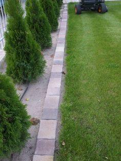 Be Perfect, Sidewalk, Gardens, Tips, Side Walkway, Outdoor Gardens, Walkway, Walkways, Garden