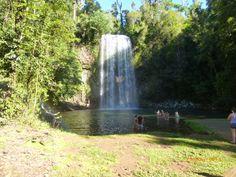 Milla Milla Falls in the Daintree Rainforest