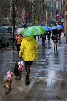 .colorful stroll on a rainy day...