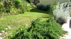 Studio Bellesi Giuntoli - Garden by th sea in Quercianella, Livorno