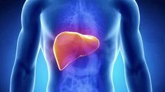 O Fígado na visão Medicina Tradicional Chinesa