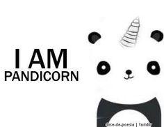 cute, panda, sweet, unicorn - image #714419 on Favim.com