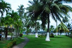 The grounds of the Davao Waterfront Insular Hotel, Davao, Philippines by Roberto Bonoan #DusitDreamHoliday