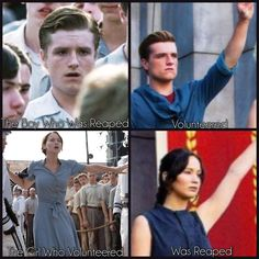 The Hunger Games, Hunger Games Problems, Divergent Hunger Games, Hunger Games Memes, Hunger Games Fandom, Hunger Games Trilogy, Writing Prompts Funny, Fandom Quotes, Die Games
