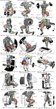 Fitness Workouts, Fitness Hacks, Body Workouts, Fitness Classes, Fitness Man, Muscle Fitness, Health Fitness, Fitness Foods, Muscle Nutrition