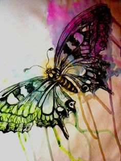 Watercolour butterfly…would be a sweet tattoo
