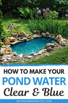 Blue pond water is something that all pond owners dream of here s how to make your backyard pond water clear and blue pond backyardpond gardenpond top 10 floating pond plants an excellent addition to any garden pond Small Backyard Ponds, Ponds For Small Gardens, Outdoor Ponds, Backyard Water Feature, Small Ponds, Backyard Patio, Outdoor Water Fountains, Small Fish Pond, Fish Pond Gardens