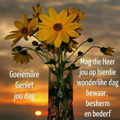 Good Morning Flowers, Good Morning Wishes, Goeie More, Afrikaans, Glass Vase, Blessed, Blessings, Lilac, Celebrations