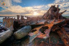 For those of you who like photographing something a little bit different, you are really going to enjoy capturing the Shipwreck at Cruwee Cove, La Perouse. Shipwreck, Road Trip, Photography, Painting, Photograph, Photography Business, Painting Art, Photoshoot, Fotografie