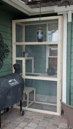 LOVE this screened in outdoor cat area. My inside cats would LOVE to be able to… LOVE this screened in outdoor cat area. My inside cats would LOVE to be able to climb out a window for some fresh air by carolina Diy Cat Enclosure, Outdoor Cat Enclosure, Outdoor Cats, Outdoor Cat Habitat, Cat House Outdoor, Outdoor Dog Area, Outdoor Cat Shelter, Outdoor Balcony, Outdoor Areas
