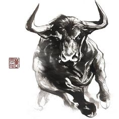 Ox Tattoo, Samoan Tattoo, Polynesian Tattoos, Animal Paintings, Animal Drawings, Toros Tattoo, Taurus Bull Tattoos, Bull Images, Warrior Tattoos