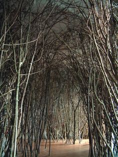 Olafur Eliasson, The Forked Forest Path, 1998