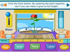 Learn about how plants grow by experimenting with this interactive science activity. Using heat & water, see if you can make the plant grow to a healthy size.