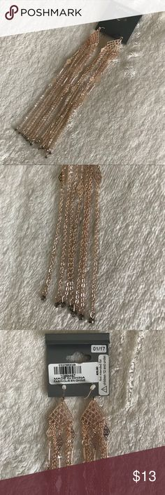 Long rose gold earrings Long rose gold fringed earrings. Measures 5.5in. in length, very light weight. Never worn or tried on. Express Jewelry Earrings