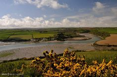 A circular walk from Padstow along Little Petherick Creek and the Camel Trail - miles - moderate North Cornwall, South Devon, Heaven On Earth, Us Travel, Britain, Camel, Scilly Isles, Trail, Beautiful Places