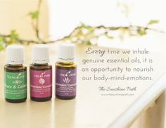 Young Living Essential Oils: The importance of diffusing and inhaling | For more info, come visit: www.thesavvyoiler.com